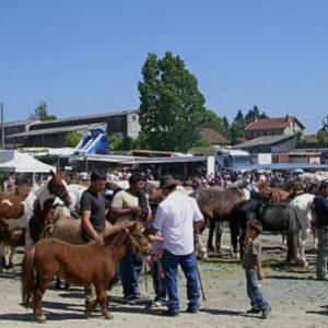 Foire aux chevaux MAINSAT @ Mainsat | Nouvelle-Aquitaine | France